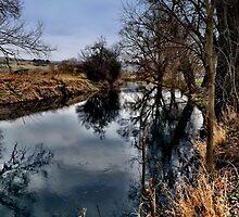 Winter am Fluss 2 by harietteh