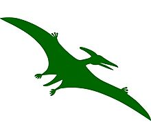 Pterodactyl Dinosaur  Photographic Print
