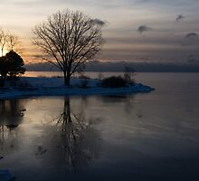 Gray Reflections and Ice Patches by Georgia Mizuleva