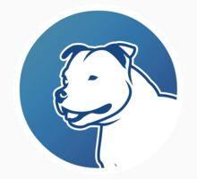 Staffbull // Staffordshire Bullterrier by bullylove