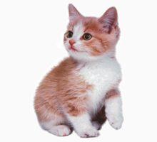 Kitten! Sale!!! Kids Tee