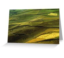 Fields in the Andes Greeting Card