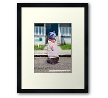 Gumball in real life - The Amazing World of Gumball Framed Print