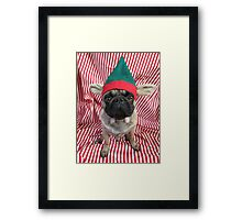 Puggy Pixie Red Framed Print