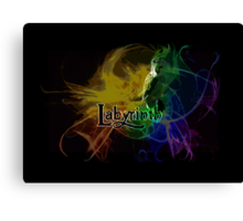 Into the Labyrinth Canvas Print