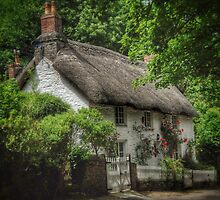 Old English Thatched Cottage by Scott Anderson