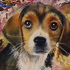 Picasso The Beagle by Jan Szymczuk