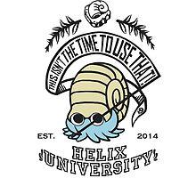 Helix Fossil University 2 by arsfera
