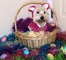 Easter Basket Westie Bunny by smithmansell