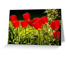 tulip impressions Greeting Card
