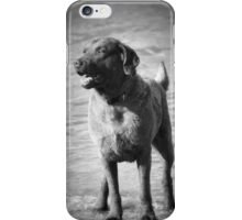 Dog on the Shore iPhone Case/Skin