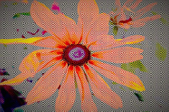 Light orange flower design by ♥⊱ B. Randi Bailey