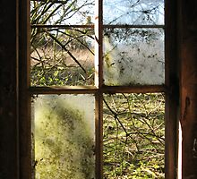 Old Window by shiro
