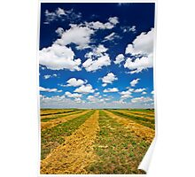 Wheat farm field at harvest Poster