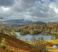 Tarn Hows by VoluntaryRanger
