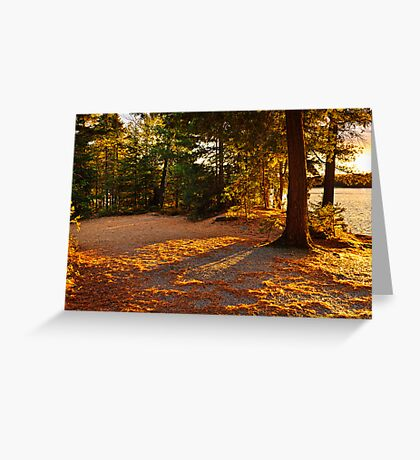Autumn trees near lake Greeting Card