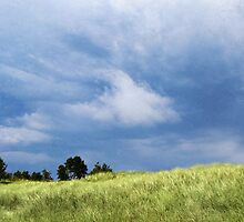 Storm Over Grassy Dunes by Kathilee