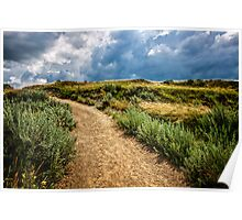 Trail in Badlands in Alberta, Canada Poster