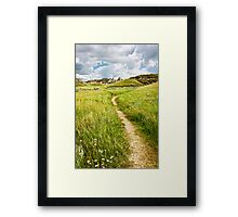 Trail in Badlands in Alberta, Canada Framed Print