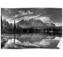 Herbert Lake in grey Poster