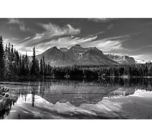 Herbert Lake in grey Photographic Print