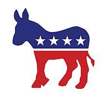Democrat Original Donkey Photographic Print