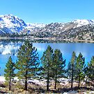 Beautiful June Lake by marilyn diaz