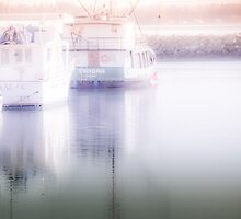 Cool Fog by Ede Sartori