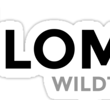 Team Solomid - WildTurtle Sticker