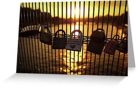 Love Locks in Paris by bposs98