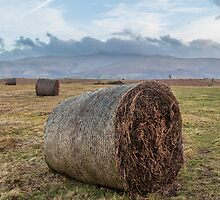 Hills of Brecon Beacons National park  by LacoHubaty