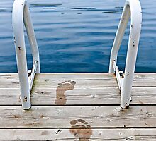 Footprints on dock at summer lake by Elena Elisseeva