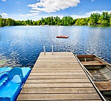 Dock on lake in summer cottage country by Elena Elisseeva
