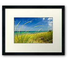 Sand dunes at beach Framed Print