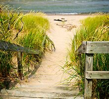 Wooden stairs over dunes at beach by Elena Elisseeva