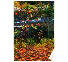 Fall forest and river Poster