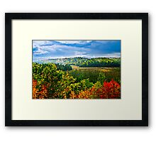 Fall forest rain storm Framed Print