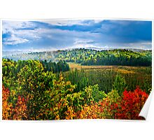 Fall forest rain storm Poster