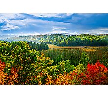 Fall forest rain storm Photographic Print
