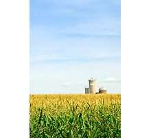 Corn field with silos Photographic Print