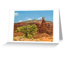 Desert Survivor - Capitol Reef NP Greeting Card