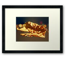 ©NS Leaf Bokeh IA Framed Print