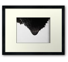 ©NS Dropping Too IA Framed Print