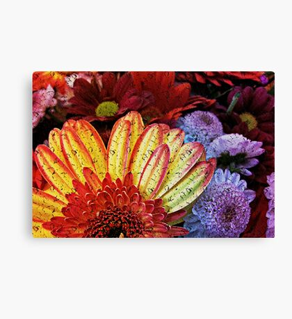 Beauty in the cracked canvas of faded colors Canvas Print