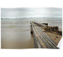 Beach Drift Wood Poster