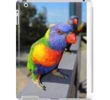 Rainbow Lorikeet Parrot iPad Case/Skin