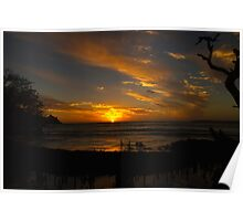 Sunset in the mangroves Poster