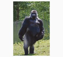 Gorilla stand up by daveashwin