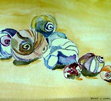 Plum Island Shells by watercolors1