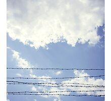 Barbed Sky - iPad Case by Natalie Broome